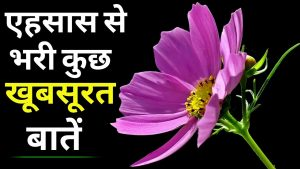 कुछ सच्ची बातें।। Inspirational,heart touching and motivational quotes in hindi….