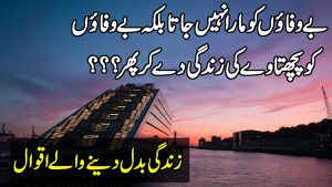 Heart Touching Quotes In Urdu |Quotes About Life |Motivational Quotes In Hindi |Inspirational Quotes