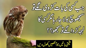 Heart Touching Urdu Quotes | Quotations About Life In Hindi | Inspirational Quotes In Hindi |