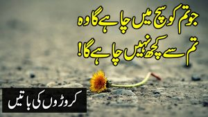 Out Standing Urdu Quotes In Hindi Urdu   Famous Quotes Status In Urdu   Motivational Quotes in Hindi
