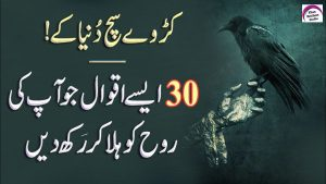 30 Most Amazing Quotes Collection | Sad Quotes About Life | Rj Shan Ali | Quotes In Urdu/Hindi