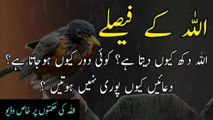ALLAH kay Faislay aur Hikmat | Best Collection of Islamic Urdu Quotes | Quotes about Allah in Urdu