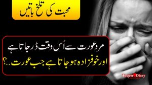 Amazing Collection of Heart touching Quotes | Quotes on Love | aqwal e zareen in urdu