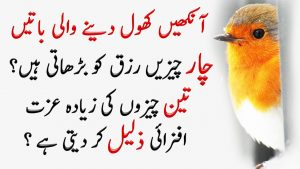Amazing Quotes In Urdu   Best Collection Of Urdu Quotes   Quotes In Urdu/Hindi   Story Palace