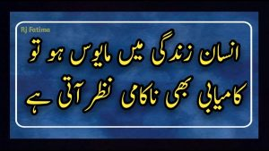 Beautiful Quotes Collection About Love And Life   Best Inspirational Quotes   Urdu aqwal e Zareen