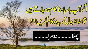 Beautiful Quotes Ever | Amazing Collection Of Urdu Quotes | Aqwal E zareen |  Hindi Love Quotes