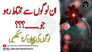 Best Amazing Quotes | Beautiful Collection Of Urdu Words | Quotes About Life | Heart Touching Quotes