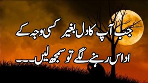 Best Awesome Quotes Collections About Happiness[Heart Touching Urdu Motivational Quotes About Aurat]
