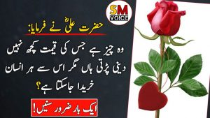 Best Collection Of Hazrat Ali Quotes || Hazrat Ali (R.A) Heart Touching Quotes In Urdu || SM Voice