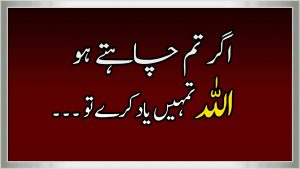 Best Collection of Islamic Quotes in Urdu || Part 30 ||  Best Heart Touching Urdu Quotes