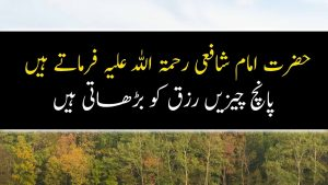 Best Collection of Urdu Quotes about Life  Part 6 | Isalmic Quotes Diary
