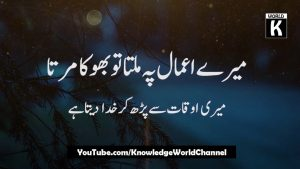 Best Collection of Urdu Quotes on Shukar | Knowledge World