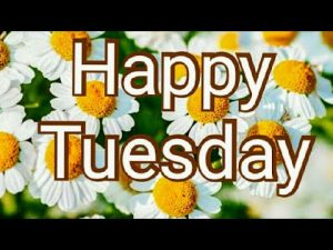 Good morning Tuesday images, best good morning images, whatsapp images & beautiful flowers images