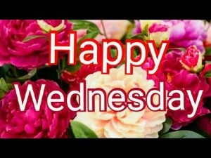Good morning Wednesday images best good morning images, whatsapp images & beautiful flowers images