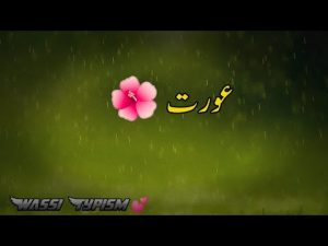 Heart Touching Quotes in Urdu | Sad Poetry Whatsapp Status 💕 Islamic Status Poetry 💔 Famous Quotes