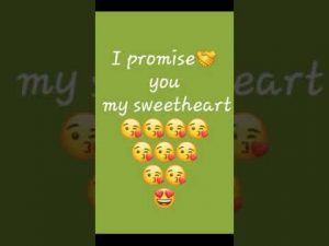 I Promise You My Sweetheart | Promise Day Shayari | Happy Promise Day | Promise Day Status