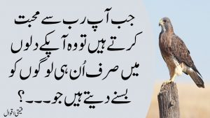 Jab Aap Rab (ALLAH) Say Muhabat karty hain | best urdu quotes collections | urdu quotes | quotations