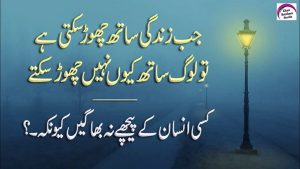 Kisi Insan K Peche Na Bhagen   Best Collection Of Sad Quotes About Life   Rj Shan Ali
