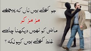 Life Changing Quotes   Must Watch   Best Collections Quotes Of Urdu Hindi   #Shorts ) Asma MaQsood