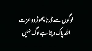 Most Beautiful 2 Line Quotes In Urdu || Heart Touching Collection Of Urdu Quotes || Knowledge World