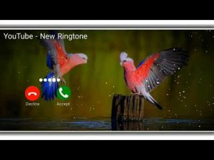 New Sms tone || Cute SMS tone || best notification ringtone || love message ringtone || SMS Ringtone