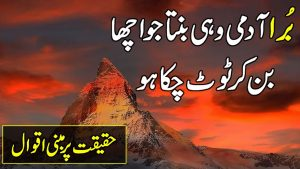 Zubair Maqsood Famous Quotes In Urdu | Amazing Collection Of Quotes In Urdu Hindi | Quotes On Life