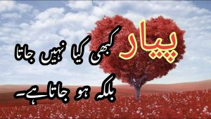 Best Quotes About #Love پیار 💕 ||Golden Words ||Best Collections Of Urdu Quotes.