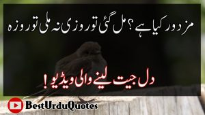 Best Urdu Quotes #08 | Beautiful Collections Of Urdu Quotes | Heart Touching Quotes In Hindi
