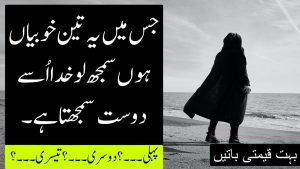 Best Urdu Quotes Collection | Islamic Quotes | aqwal e zareen | Urdu quotation | Sk Knowledge